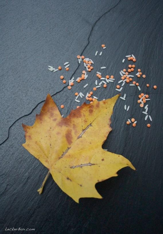 wpid-mittagsbox_apfelchutney_3-2012-10-20-09-00.jpg